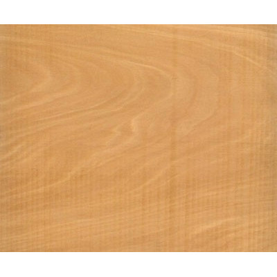 Yellowwood / Geelhout